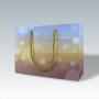 Exklusive Papiertasche mit glänzender Laminierung und gedämpftem Farbmuster