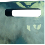 Griffloch